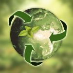 Best Practices in Choosing Green Products