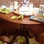 Family shamed for trashing Harvester restaurant during meal – NEWS.com